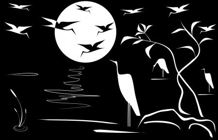 night bird: Night landscape  Illustration