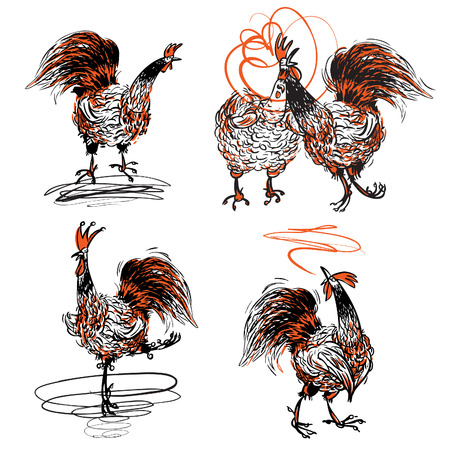 poultry farm: Roosters and a Hen