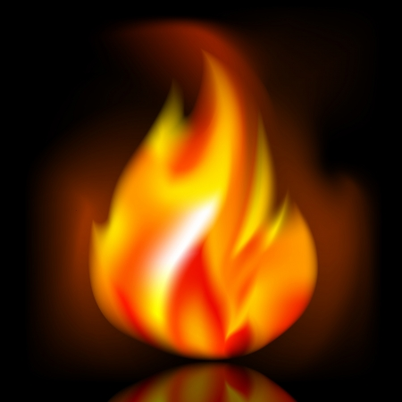 Fire, bright flame on dark background Vector
