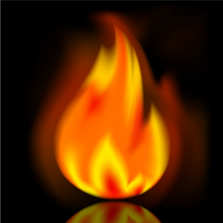 Fire, bright flame on black background Stock Vector - 19490674