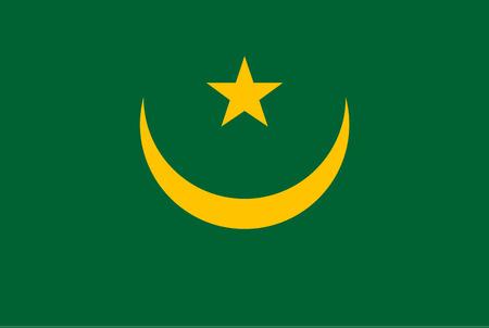 Flag of Mauritania until 2017. Rectangular shape icon on white background, vector illustration.