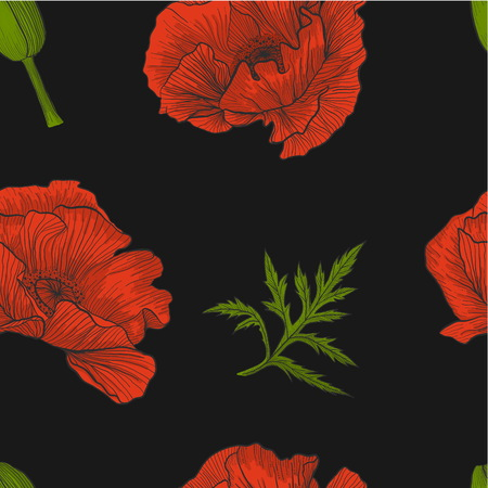 Floral seamless pattern of bright red poppies, bud and leaves on a black background vector.