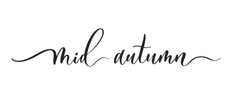 Mid autumn -  typography lettering quote, brush calligraphy banner with  thin line.