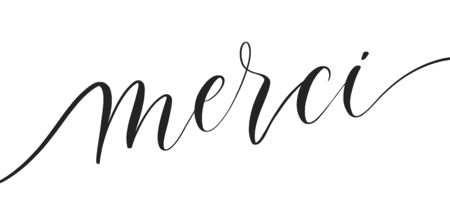 Merci -  typography lettering quote, brush calligraphy banner with  thin line.