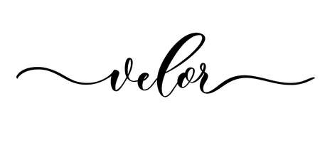 Velor - vector calligraphic inscription with smooth lines for shop fabric and knitting, logo, textile.