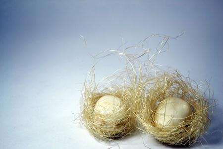 huevos de oro: Huevos de Oro