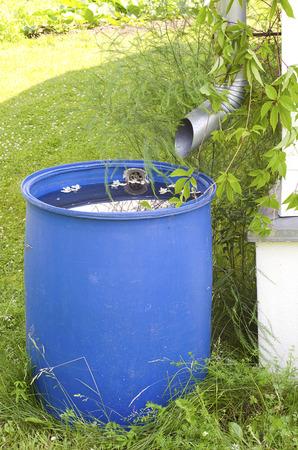 カントリー ・ ハウスでプラスチック バレルの雨水を排水します。