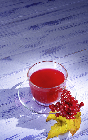 Drink of viburnum juice in a glass Cup with a saucer with a bunch of viburnum berries on a purple table close-up.