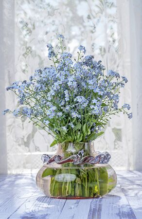 Still life bouquet of field blue forget-me-not flowers in a glass vase on the background of a window with tulle opposite the light. Stock Photo - 137273514