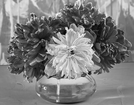 Black and white image of a bouquet of peonies in a round glass vase close-up. Stock Photo - 137273504