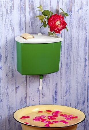 A plastic green washstand on a purple fence with a vase with a rose flower and a bar of soap on it. Under the washstand is a basin with rose petals. Stock Photo