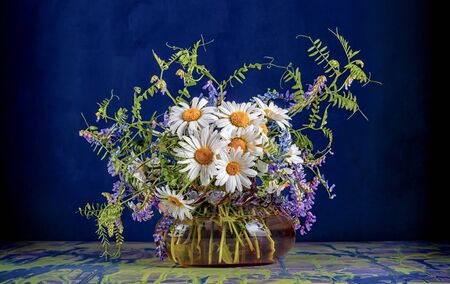 A bouquet of wild summer field flowers of chamomile and mouse peas in a glass vase on a blue and yellow table and dark blue background.