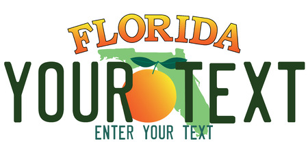 Florida number plate Ilustrace