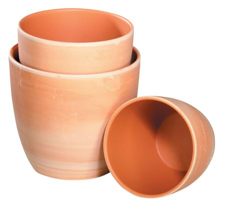 A group of decorative flower pots isolated on a white background  photo