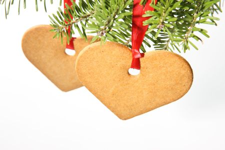 Gingerbread hearts hanging under fir branch and isolated against white background photo