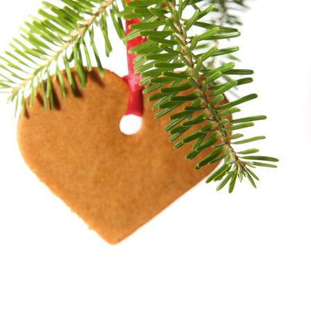 Gingerbread heart hanging under fir branch and isolated against white background photo