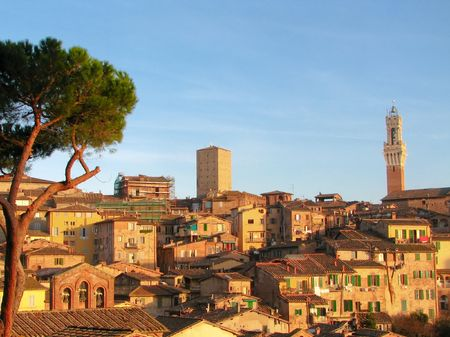 historical city of sienna during sunset Stock Photo - 2846743