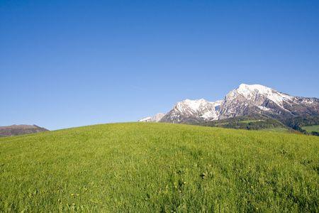 mountainside: alpine landscape in the springtime