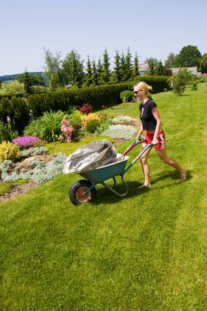 young female gardening with a wheelbarrow Stock Photo - 3341266