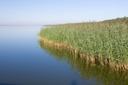 cloudless: calm lake with reeds at the dawn Stock Photo