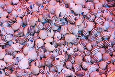 fish market background from sicily photo