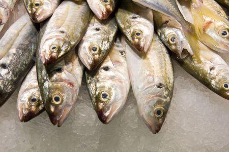 fresh fish on the market Stock Photo - 3750775
