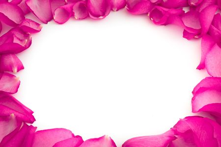 name day: rose petals on white background