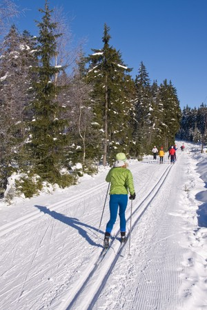 cross-country skier in the trail photo