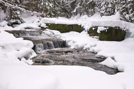 heap snow: mountainous stream covered with snow