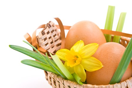 easter eggs in duck shaped basket photo