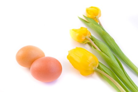 isolated easter eggs with yellow tulips photo