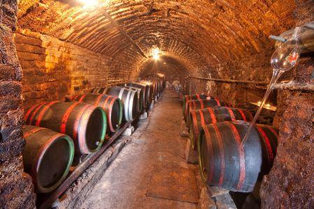 cave: les tonneaux de vin dans le vieux vin cave Banque d'images
