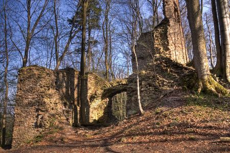 medieval castle ruins  in the forest photo