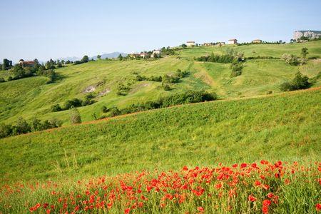 typical landscape in Italian region Tuscany Stock Photo - 5270758