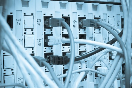 ethernet cables maze connected to switch photo