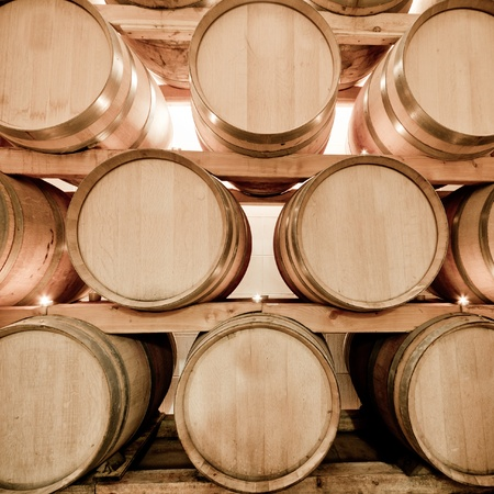 wine barrels in old wine cave Stock Photo - 8552607