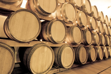 wine barrels in old wine cave Stock Photo - 8602894