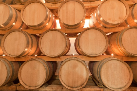 wine barrels in old wine cave Stock Photo - 8607452