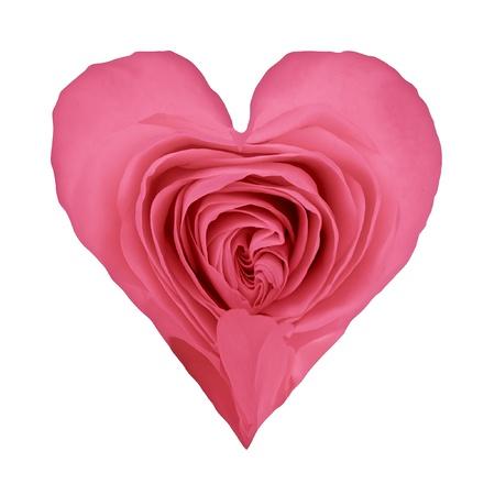 valentine heart shaped rose petals Stock Photo - 8742474