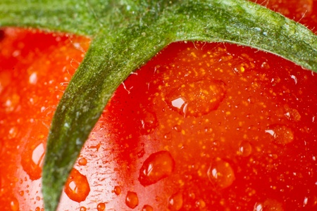 macro of tomato covered with water drops photo