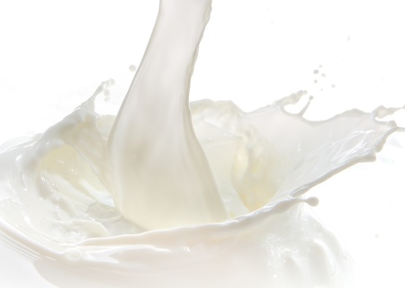 milk splash: pouring milk splash isolated on white background