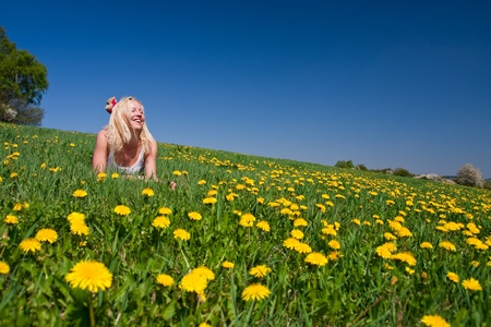 young woman lying on a dandelion meadow photo