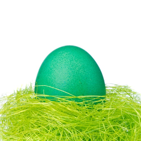 painted easter egg in a nest photo