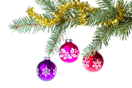 decorated christmas branch isolated on white background Stock Photo - 11551805