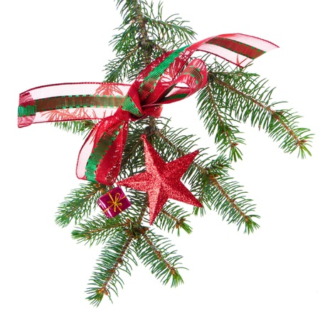 decorated chrisitmas branch isolated on white background photo
