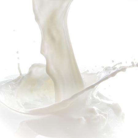 milkshake: pouring milk splash isolated on white background