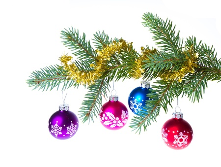 decorated christmas branch isolated on white background Stock Photo - 12809205