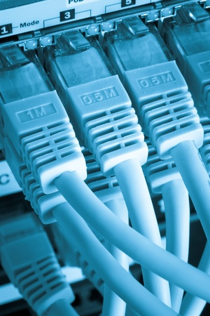 close up of network cables connected to switch Stock Photo - 12889878