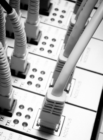 close up of network cables connected to switch photo
