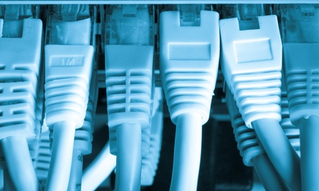 close up of network cables connected to switch Stock Photo - 13098082